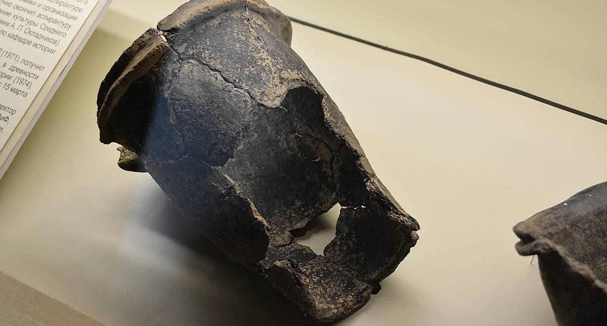 Экскурсия «Жизнь в каменном веке»